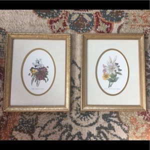 Other - Set of 2 Vintage Botanical Prints